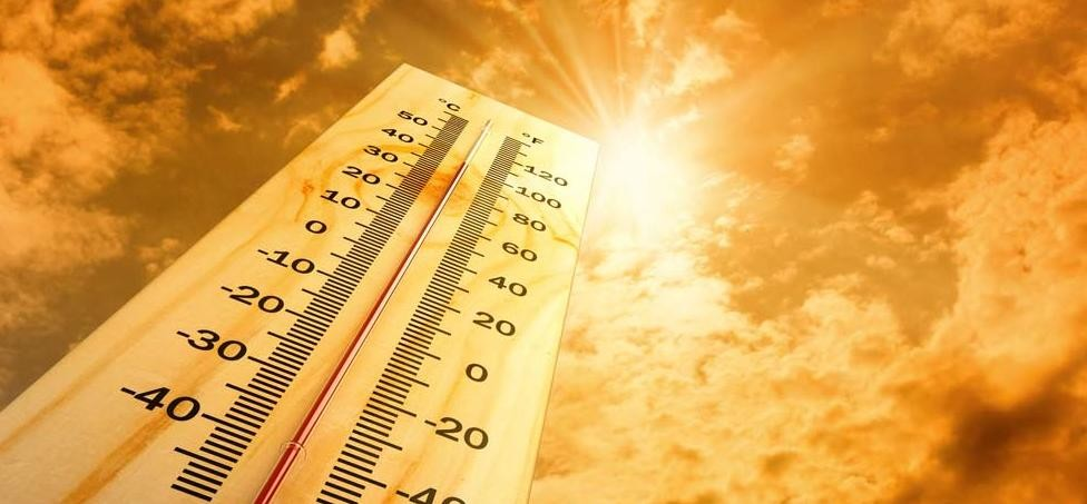 increasing temperature world wide risking you kidney